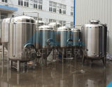 Equipamento 500L da cerveja de Homebrew (ACE-FJG-R6)