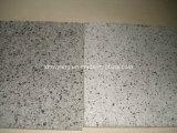 Естественное Stone Polished G603 Grey Granite Slab для Wall/Flooring (YQC)