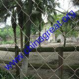 動物園の鳥の網