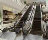 Vvvf Control Commercial Escalator con 30 Degree 1000mm/800mm/600mm Step Width