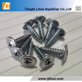 Modifié Truss Head Wafer Type Auto Drilling / Vis Tapping