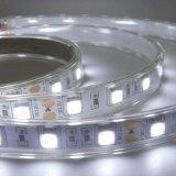 IP65 impermeabilizzano la striscia di gestione a distanza ricaricabile dell'indicatore luminoso 5050 LED