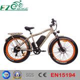 Bici elettrica di vendita dello Li-ione della batteria della montagna calda della E-Bici con En15194