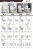 Cupc высокой эффективности Wall-Hung влаги цельный туалет моя-2786