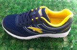 Все ботинки бега размера с много обувь идущих ботинок цвета