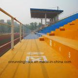 Plancher durable et anti-encrassement de la couleur Cn-C04 de loisirs de région