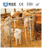 De gegalvaniseerde Omheining van het Gebied van het Landbouwbedrijf van Schapen/de Omheining van Herten/de Omheining van het Vee