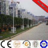 Fornitore chiaro solare residenziale della doppia singola del braccio sosta LED dell'iarda