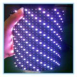 실내 P6.67 자석 LED 부드럽게 Full-Color 전시 모듈