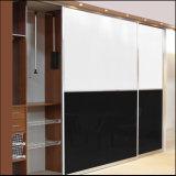 Раздвижные двери самонаводят шкаф мебели как комплект спальни (zh-5046)