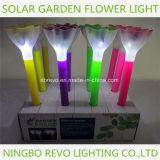 Indicatore luminoso solare variopinto del fiore del giardino del LED (RS008)