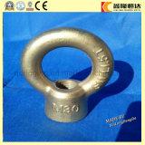 RUÍDO do aço inoxidável 582 M5 que levantam a porca oval do olho