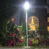 Bluesmart 80W Panneau solaire extérieur intégré LED Street Garden Light avec Bird-Preventing Thorn