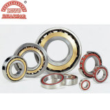Eckiges Contact Ball Bearing (7034AC, 7234AC)