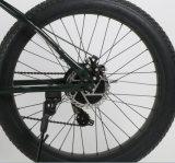 26inch 36Vの脂肪質のタイヤの雪の電気手段の/7の速度Eの手段