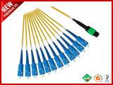 12 fibres optiques ruban multimode MPO Ttrunk compact unique câble orange