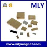 영원한 NdFeB 희토류 네오디뮴 철 붕소 발전기 또는 모터 자석 (MLY096)