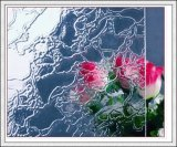 vidro modelado da flora de Karatachi do diamante de Nashiji do espaço livre de 3mm