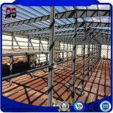 직업적인 공급자 빛 건축 디자인 산업 강철 건물