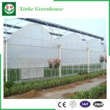 De Plastic Serre van de enig-Spanwijdte van Qingzhou met het Systeem van de Controle