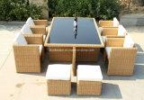 Установленная таблица таблицы ротанга ротанга Furniture/PE установленная популярная напольная (SC-A7199-H)