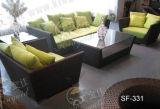 Напольные комплекты софы, мебель ротанга патио, комплекты софы сада (SF-331)