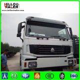 Motore primo di HOWO 6X4/camion/Sinotruk del trattore