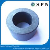 Magnete di ceramica permanente del ferrito per il motore facente un passo