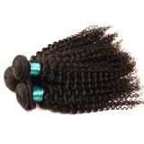 Verworrene lockige Spitze-frontales Schliessen mit Bündel-dem brasilianischen Jungfrau-Haar mit dem Schliessen-Menschenhaar, das 3bundles mit Spitze-Schliessen spinnt