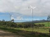 Residential를 위한 작은 Wind Turbine Generator 1000W