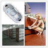 (A312) Baignoire balnéo&Outdoor Hot SPA (CE. CB approuvé)