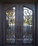 Porta de entrada exterior do dobro do ferro feito do projeto novo da qualidade superior