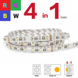 Tira el 14.4W/M de 5050 RGBW4in1 LED