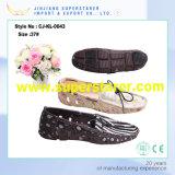 Цветастые повелительницы нянчя ботинки девушки сада школы Clogs ЕВА