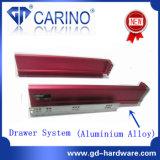 Sistema doble del cajón de la pared/sistema del rectángulo del cajón/rectángulo en tándem