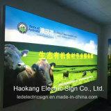 Pubblicità delle insegne luminose del LED con i blocchi per grafici illuminati del manifesto di film