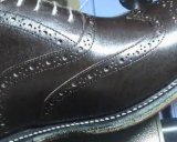 يدرز [غودر] خارجا أحذية صناعيّة وحيدة [أوتسل] يخيط [سو مشن]