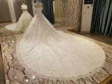 Neue Hochzeits-Kleider der Ankunfts-2017 Spitzender prinzessin-Marriage mit langer Serie