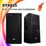 """Stx825 de """" PRO Audio Correcte Doos van de Spreker van systeem Dubbele 15"""