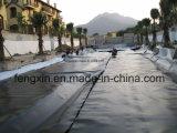 Membrana impermeable de la HDPE de la adaptación HDPE de la venta caliente para la carretera