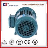 Elektrische (Elektro) AC van het Gietijzer Asynchrone Motor met Goedgekeurd Ce