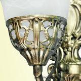 Lampe de mur chaude de vente d'approvisionnement de Zhongshan Guzhen pour le type européen