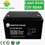 Yangtze-Energie 12V 65ah VRLA AGM-Batterie