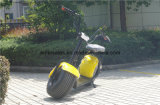 2つの車輪の自己のバランスをとる移動性の電気Citycocoの電気スクーターのWoqu Seevの電気スクーター