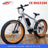 Bici eléctrica de Fujiang, MEDIADOS DE mecanismo impulsor del motor eléctrico de la bici, motor eléctrico