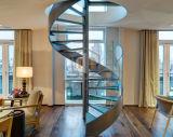 Chêne d'escalier/escaliers en acier et en bois