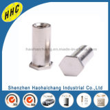 Boulon à tête hexagonale en acier inoxydable en métal personnalisé pour partie automatique