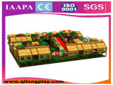 BinnenSpeelplaats van de Jonge geitjes van Qilong de Prachtige met Goede Kwaliteit (ql-1111P)