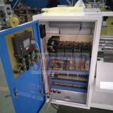 Machine Automatique à Fabriquer le Sac avec Double Lignes