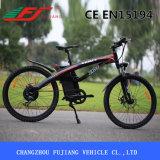 Profesional fábrica directamente suministrado E-Bike con ligero